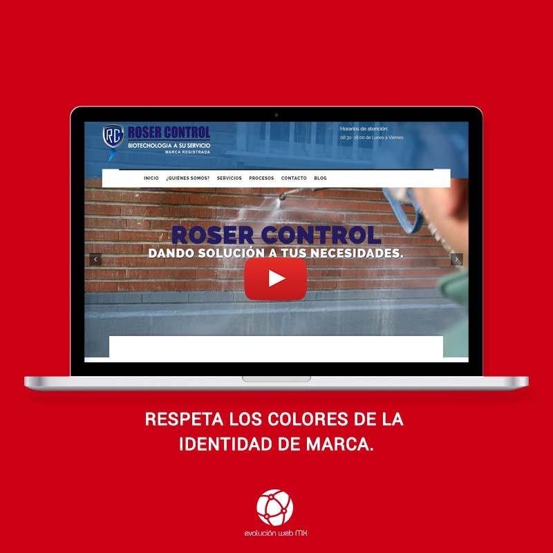 diseño-web-profesional-paginas-web-profesionales-mexico-paginas-web-profesionales-evolucion-web-mx-diseño web