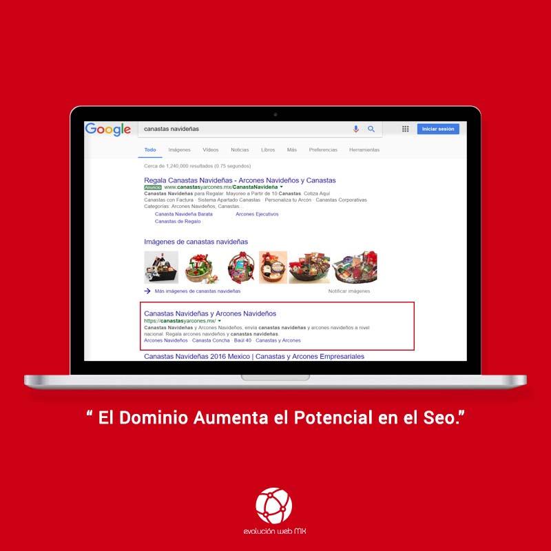 pagina web-dominio-seo-evolucion-web-mx-canastas y arcones