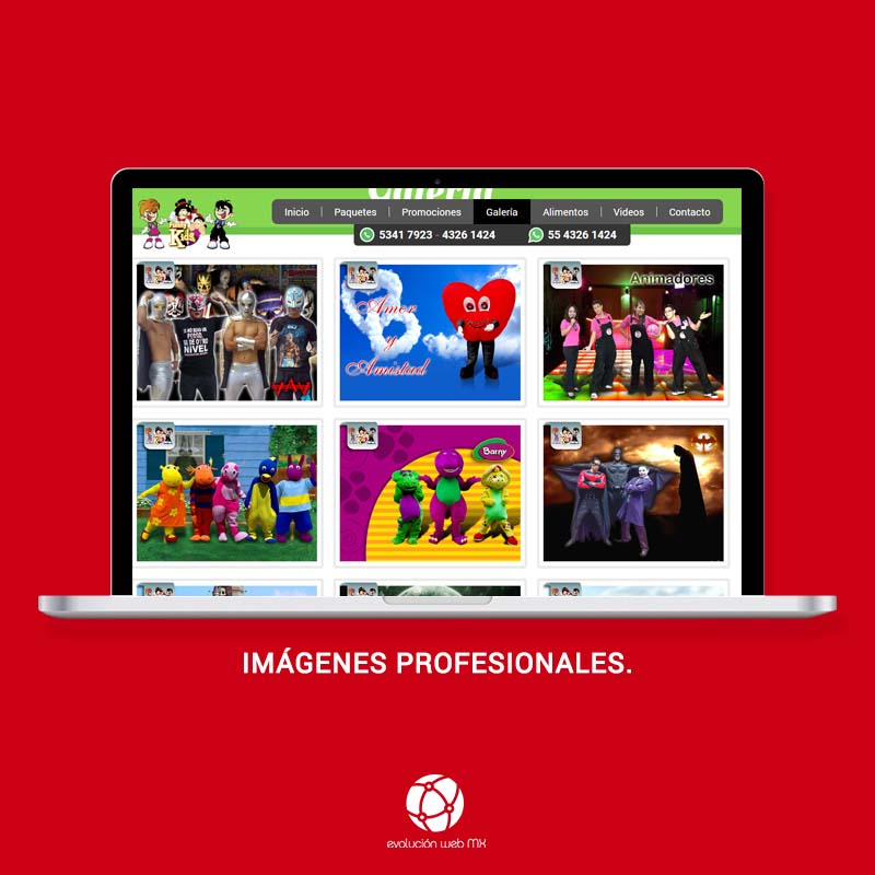 diseño-web-profesional-paginas-web-profesionales-mexico-paginas-web-profesionales-paginas-we-profesionales-diseño-web-df-evolucion-web-mx-diseño web